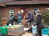 Pressing the Caleb Pike Heritage Park Apples