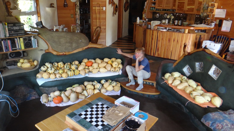 What to do with all those squash.  These all grew on a living roof.
