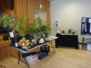 Eco-Sense Food table - Perennial plants, dried foods, cheese, fermented foods.
