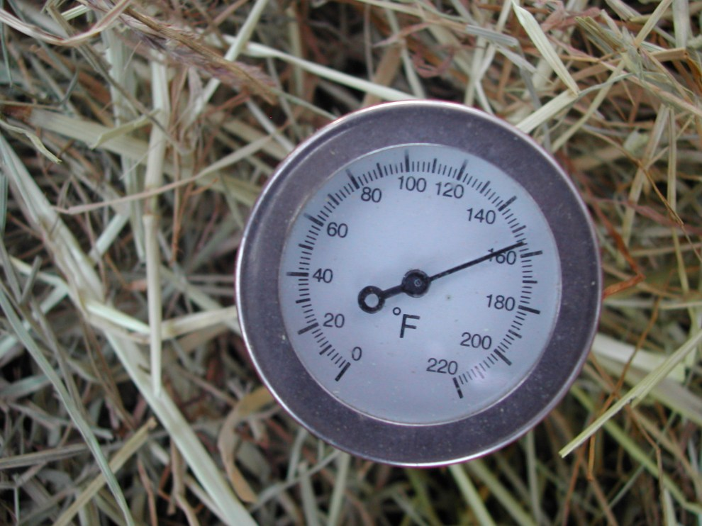 Hot Shit - Thermometer in Humanure compost