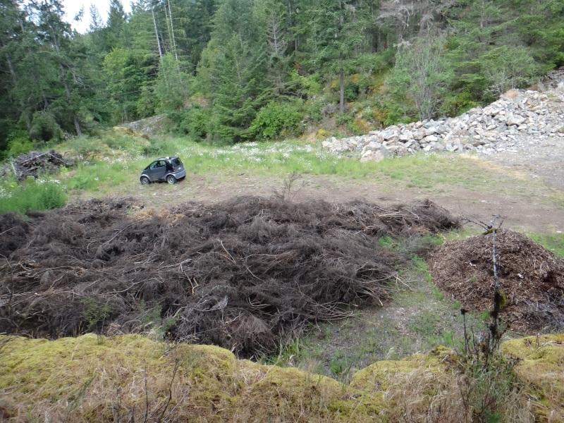 140 metre3 pile of broom