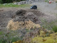 30 cubic metres of chipped broom ready to compost