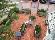 Nourish restaurant now has a Hatchet and Seed edible landscape