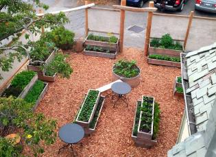 Nourish restaurant now has a Hatchet and Seed edible landscape