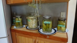 fermenting cabbage, beans, cucumbers